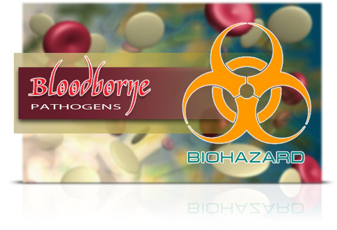 Bloodborne Pathogens Elearning Course
