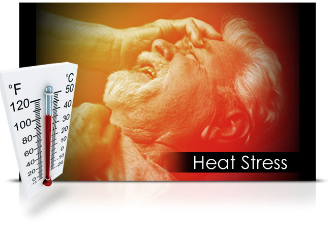 Heat Stress elearning course