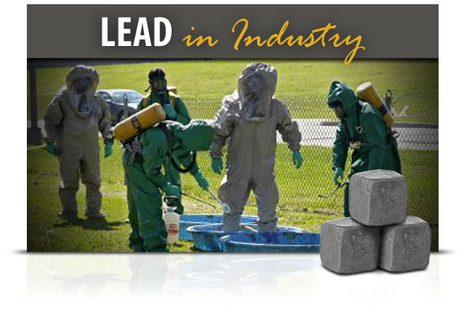 Lead in Industry elearning course